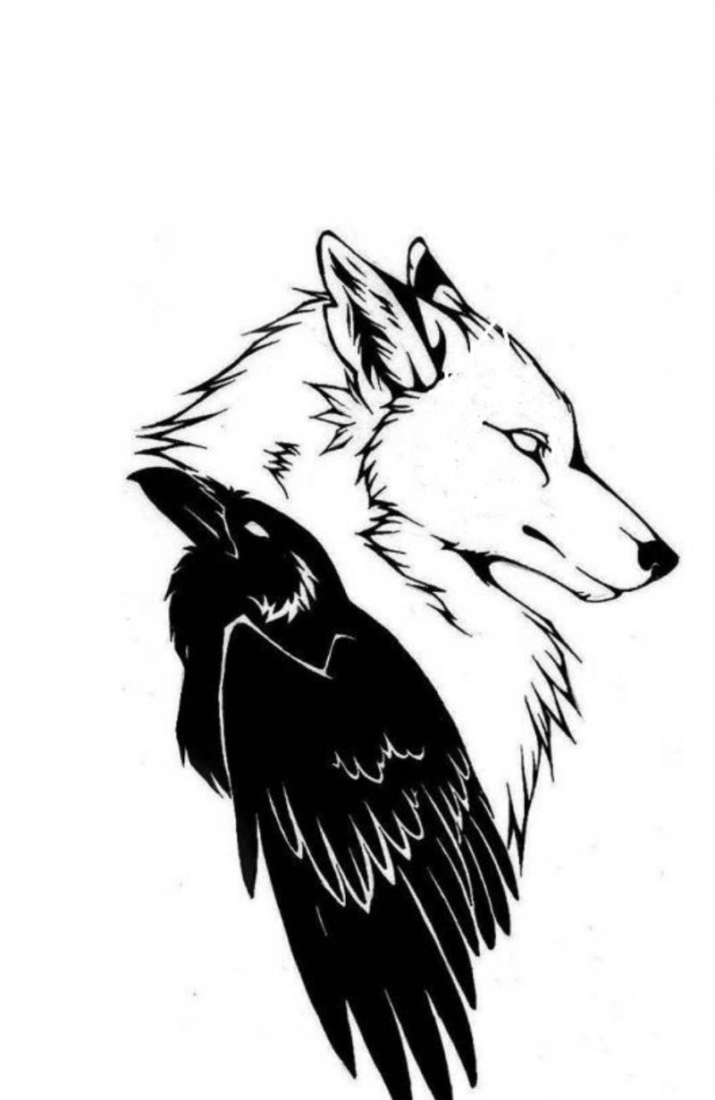Building Alaskan Dreams - The Book Wolfdog and Raven image